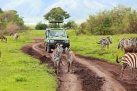 坦桑尼亚国家公园